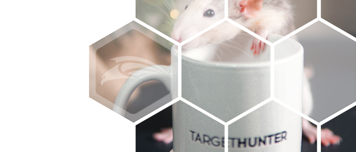 Любимые фишки TargetHunter